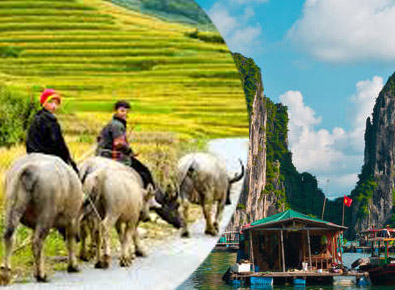 Halong Cruise and Sapa tour 4D4N
